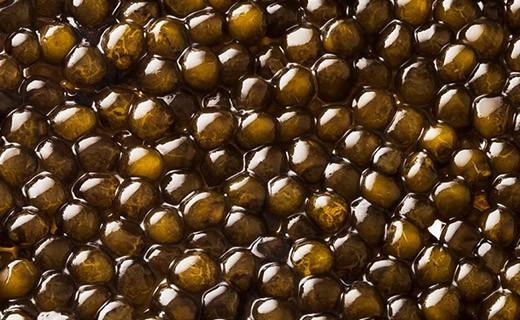 Caviale Kristal 50g - Kaviari