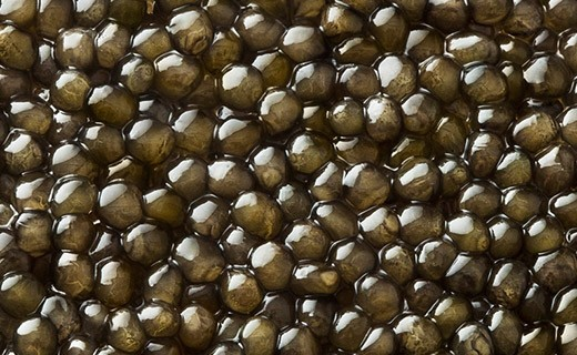 Caviale Oscietra Gold 125g - Kaviari