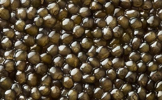 Caviale Oscietra Gold 30g - Kaviari