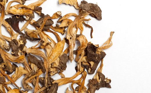 Galletti gialli secchi - La Maison du Champignon